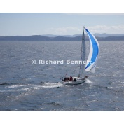 YachtRaces/YR2011/Melb to Hobart/WhiteNoise 8905 SH11