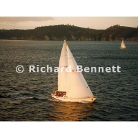 YachtRaces/YR2001/2001SydneyHobart/Anaconda 356 MH01