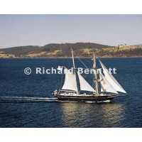YachtRaces/YR2007/CRUISING YACHTS and POLICE/YOUNG ENDEAVOUR 691LH07