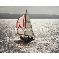 YachtRaces/YR2007/MEL HBT 2007/AFRAYED KNOT 503MH07