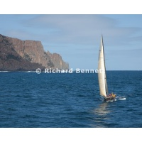 YachtRaces/YR2011/Melb to Hobart/Goldfinger 8548 SH11