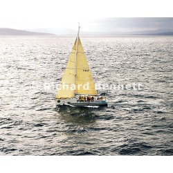 YachtRaces/YR2007/STD HBT 2007/ALACRITY 118SH07