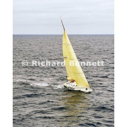YachtRaces/YR2007/STD HBT 2007/ALACRITY 236SH07