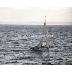 YachtRaces/YR2012/Sydney to Hobart/Cougar II 2099 SH12
