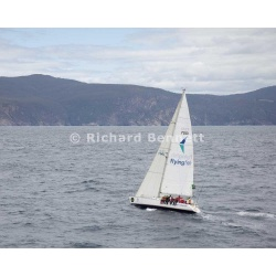 YachtRaces/YR2012/Sydney to Hobart/Flying Fish Arctos 2295 SH12
