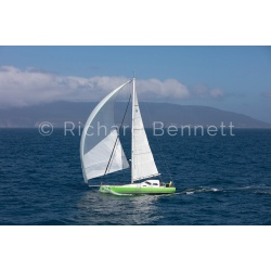YachtRaces/YR2019/L2H19/Green 8796 LH19